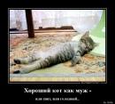 Фотоальбом Инны Когтеточкиной