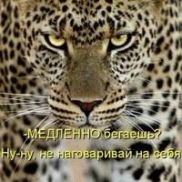ОксанаЗарипова