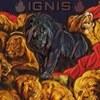 🔥 I G N I S 🔥