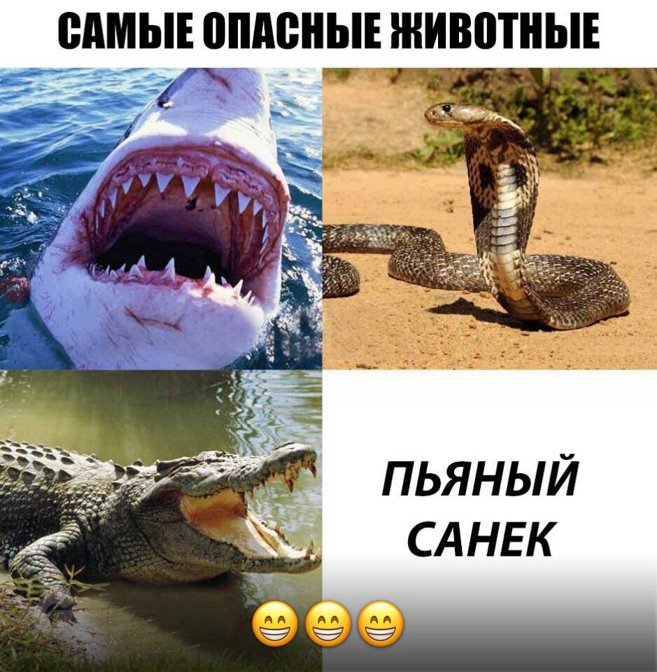 Александр Инозенцев, Тюмень - фото №14