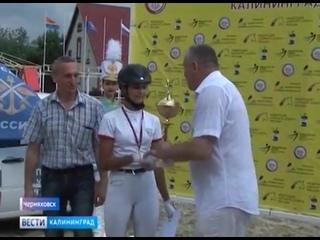В Черняховске состоялся турнир по конному спорту