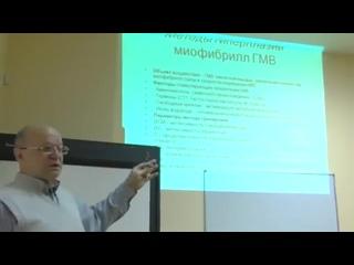 Виктор Николаевич Селуянов  - Лекция для инструкторов фитнес-клубов #ivRun