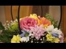 Клип свадебного банкета Виктора и Анны