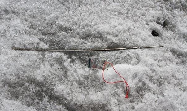 Таяние льда открыло клад с артефактами древних охотников Норвежские археологи с восторгом сообщили об обнаружении «сокровища» внушительной коллекции стрел, копий и другого снаряжения древних