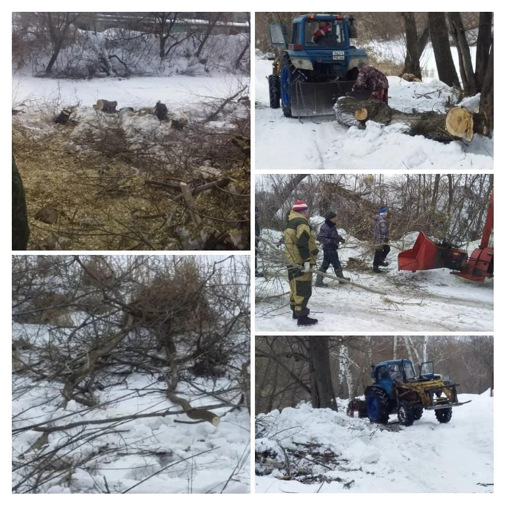 В Петровске продолжается подготовка к половодью: проводятся работы по расчистке берегов реки Медведицы от поросли кустарников и деревьев