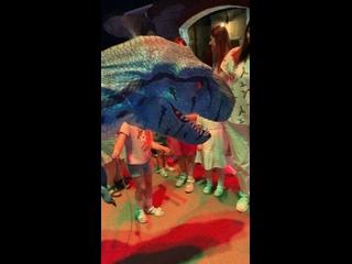 Видео от Детский развлекательный центр Затерянный Мир