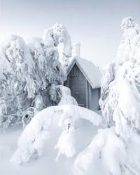 Роскошная зима!