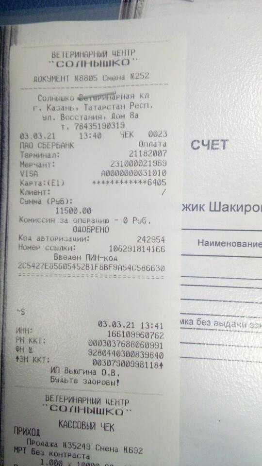 НОВОСТИ  Бой сегодня уехал в Казань-Солнышко  Сделали