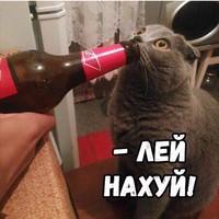 МаксПогодин