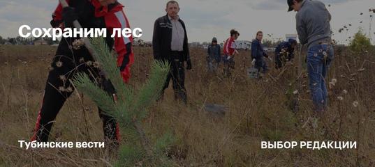 Сохраним лес - это ежегодная масштабная кампания по восстановлению российских лесов, которая проходит в