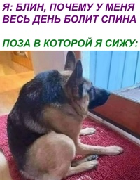 Вадим Васильев фото №22