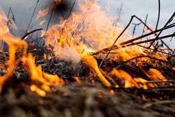 Огонь в такую погоду – это опасно!