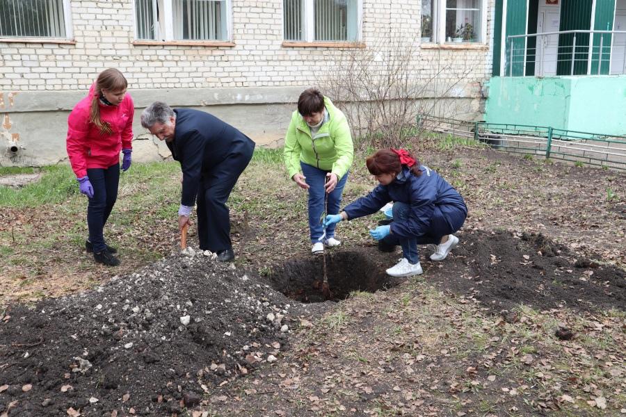 OНФ в Мордовии помог возродить в Большеелховской средней школе яблоневый сад