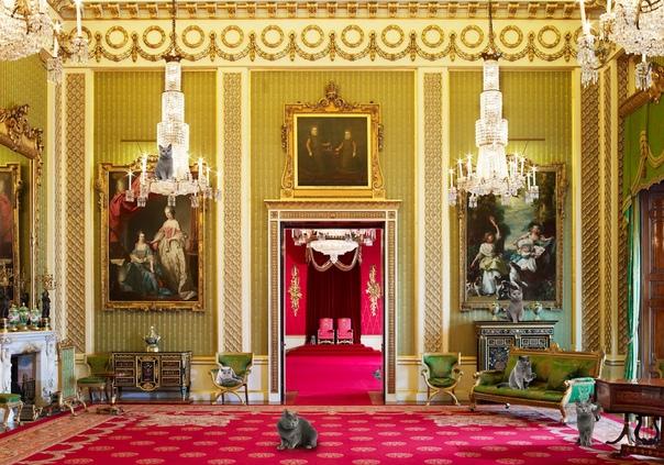 inside buckingham palace the queen's bedroom - HD1200×900
