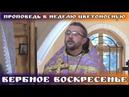 Проповедь в Неделю Цветоносную, Вербное воскресенье. Священник Игорь Сильченков