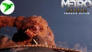 Metro: Exodus - Enhanced Edition #22 🎮 Битва с хозяином леса