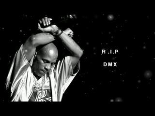 DMX & Eminem - What They Really Want (2021)   LEGEND (DMX)