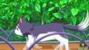 Joukamachi no Dandelion Город замок Данделион DJ Valdi Kato Jimenez Jesus Sanchez Borracha AMV anime MIX anime REMIX