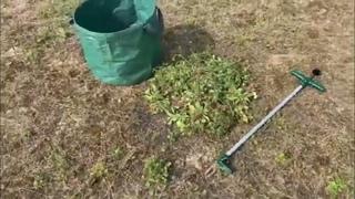 Росомаха инструмент для удаления сорняков |  средство от сорняков