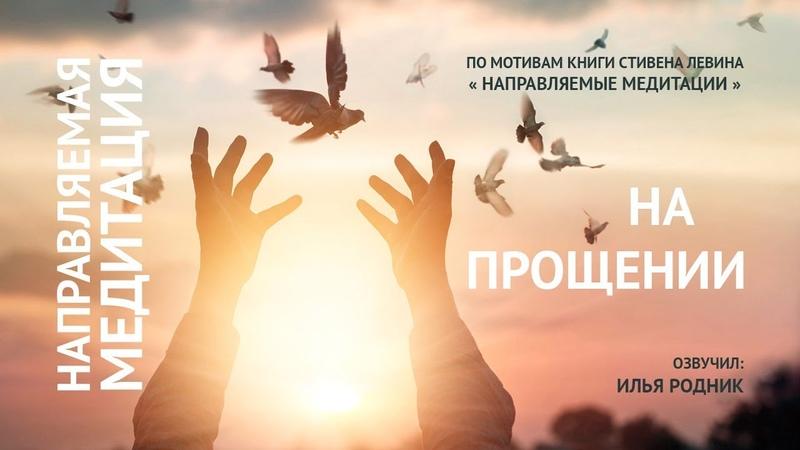 Медитация на Прощение. Илья Родник