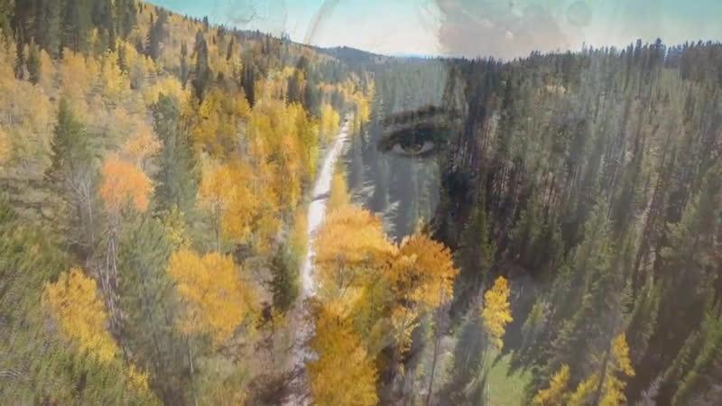 Пастернак Борис Мне снилась осень в полусвете стекол исп. Эльмира Галеева