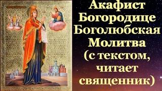 Акафист Боголюбской иконе Божией Матери, с текстом, слушать, читает священник, молитва