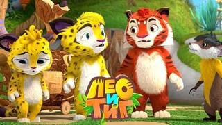 Лео и Тиг — Коварный мох— Серия 64 | Мультики для детей