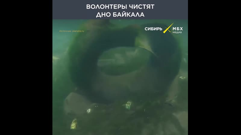 Волонтеры чистят дно Байкала