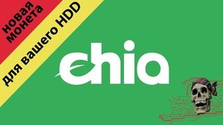 Chia Network (XCH) - МАЙНИМ НА ВИНТАХ, установка, настройка и старт