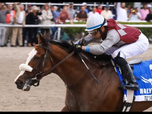 Gulfstream Park Carrera 11 The Holy Bull Stakes Gr 3 1 de Febrero 2020